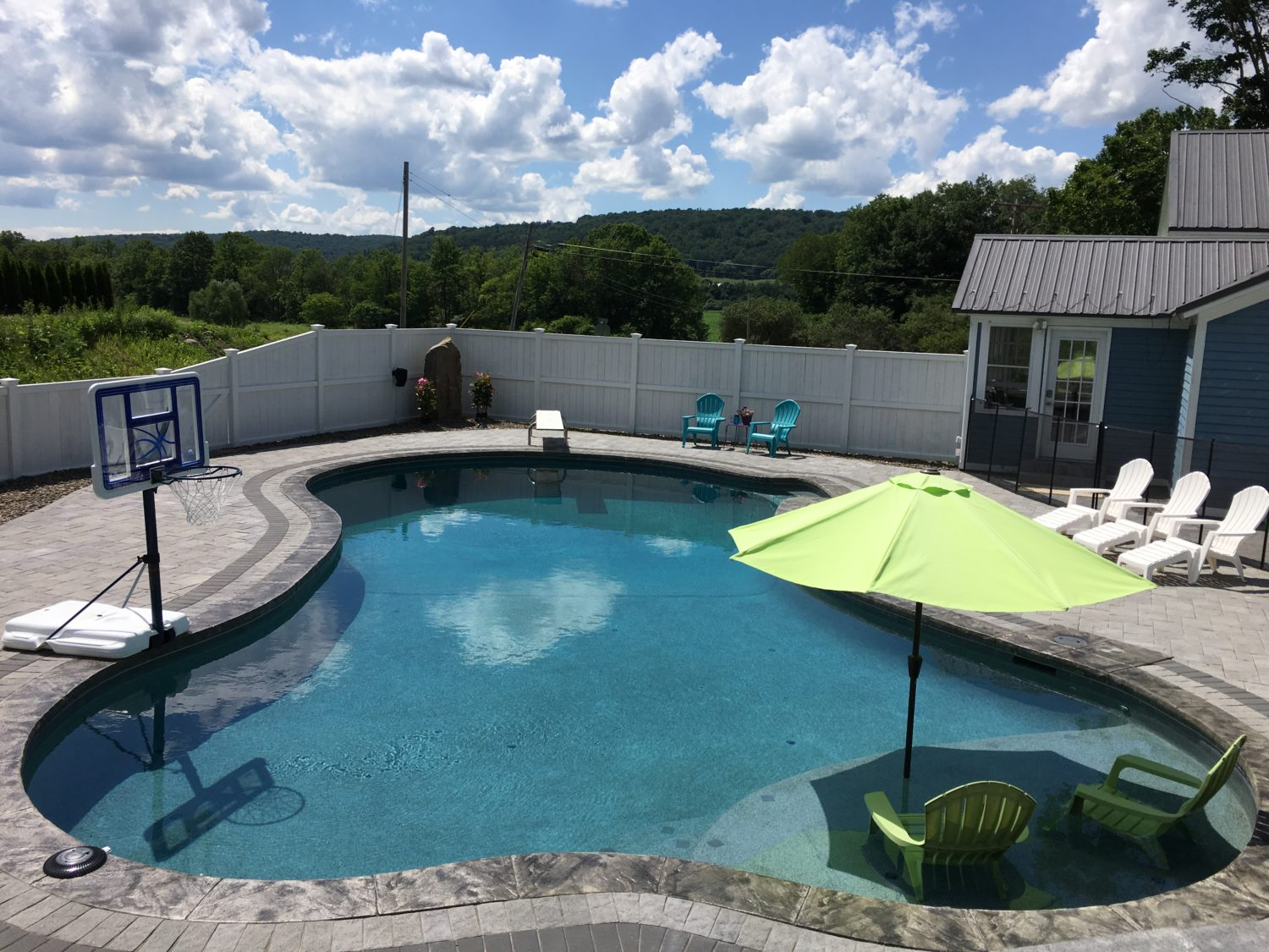 inground pool, Free form pool with sun ledge and diving board, swim jet, Syracuse NY